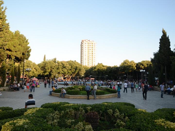 Бесплатный Wi-Fi стал доступным еще в одном парке Баку