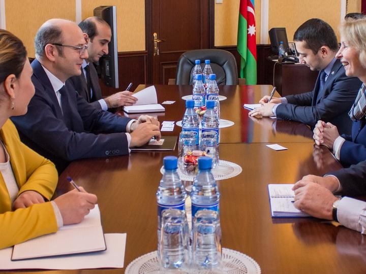 Прошла встреча главы Минэнерго Азербайджана с послом Великобритании