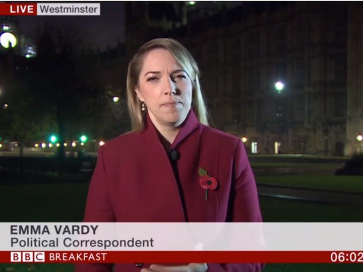 Эфир BBC прервали женские стоны - ВИДЕО