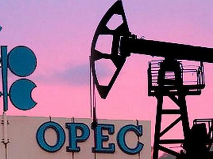 ОПЕК ожидает небольшое снижение добычи и экспорта азербайджанской нефти