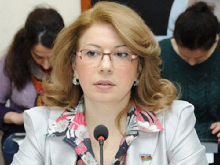 Депутат предложила установить в здании Милли Меджлиса пандусы и специальные лифты для инвалидов