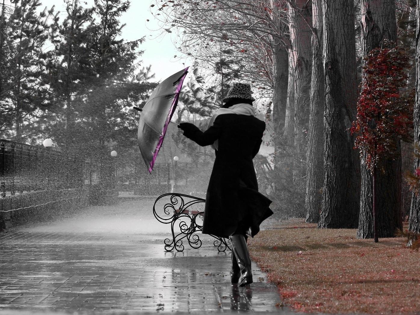 В четверг на Абшероне дождь и ветер