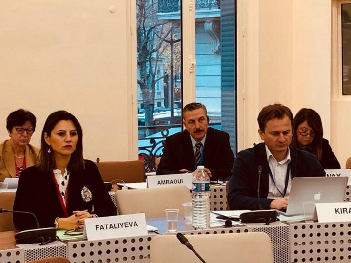 На заседании комитета ПАСЕ был принят доклад азербайджанского депутата