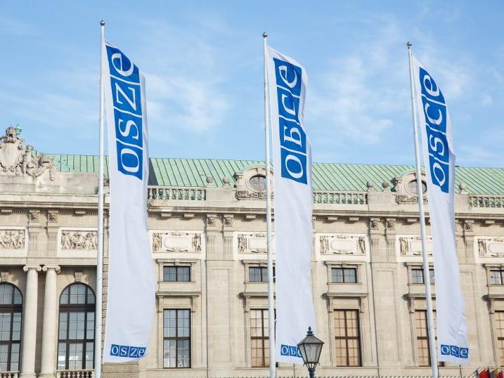 СМИД ОБСЕ в Вене: Азербайджан участвует, но ожиданий мало – ФОТО – ВИДЕО