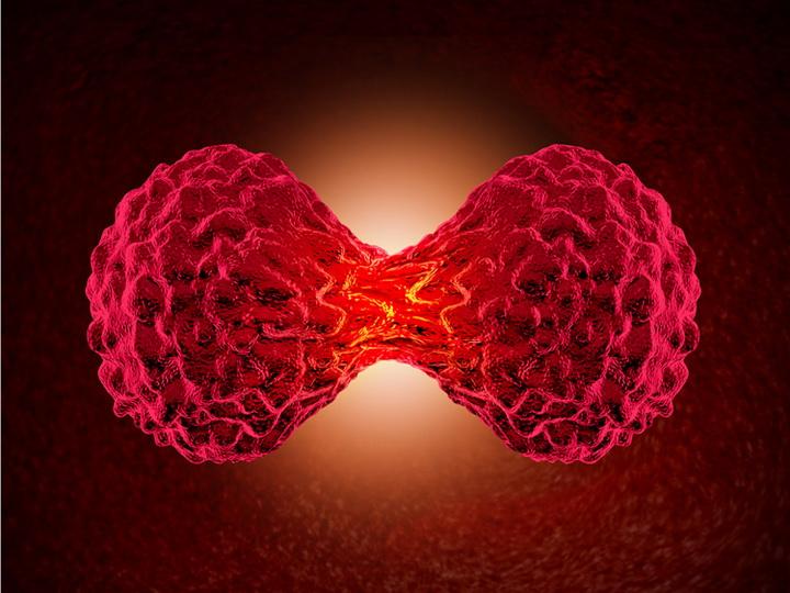 Ученые заморили раковые клетки голодом