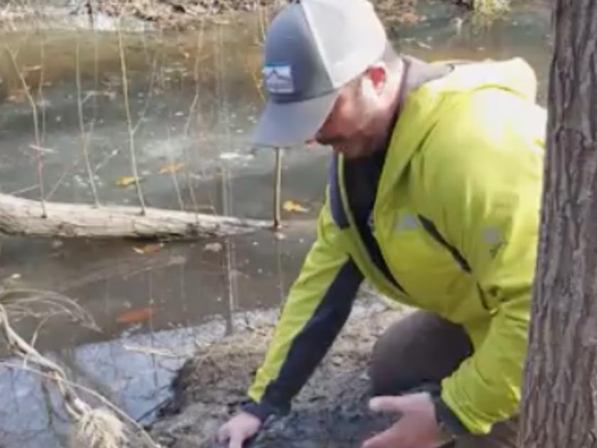 В США начали оттаивать вмерзшие в лед аллигаторы - ВИДЕО