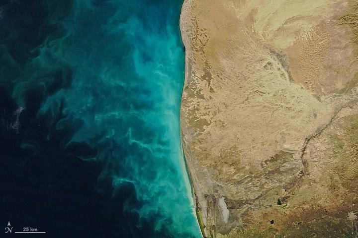 «Молочные вихри» в Каспийском море: чем чреваты последствия прогнозов NASA – ФОТО