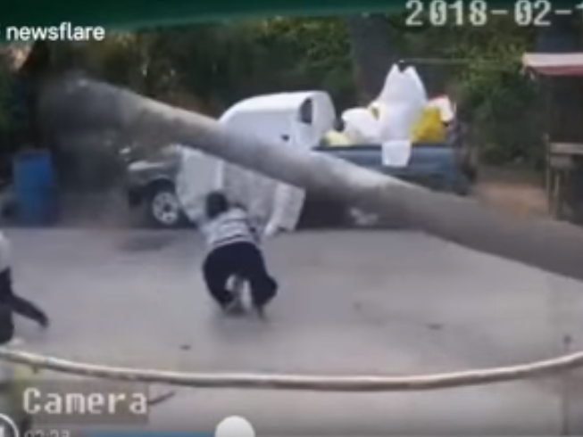 Этот мальчик родился в рубашке — пальма падает в сантиметре от него – ВИДЕО