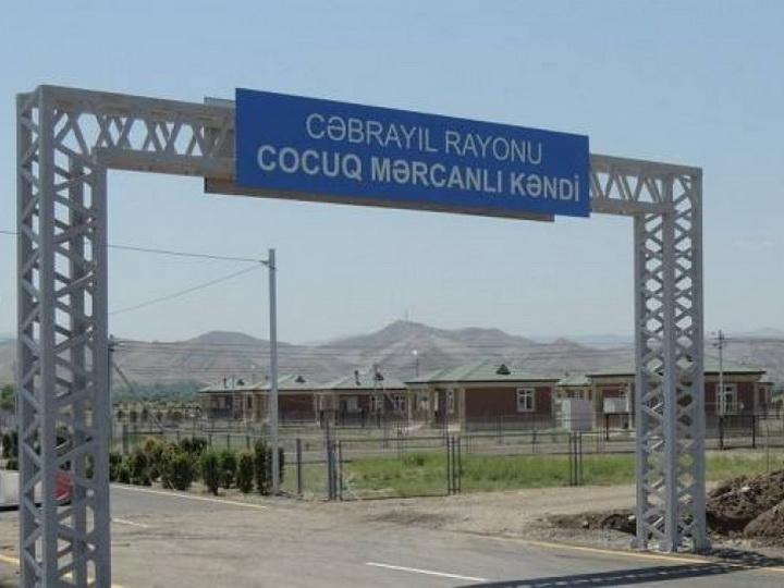 Турецкие компании совместно с Азербайджаном будут осуществлять проекты в Джоджуг Мерджанлы