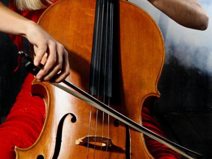 У французской виолончелистки украли инструмент за 1,3 миллиона евро