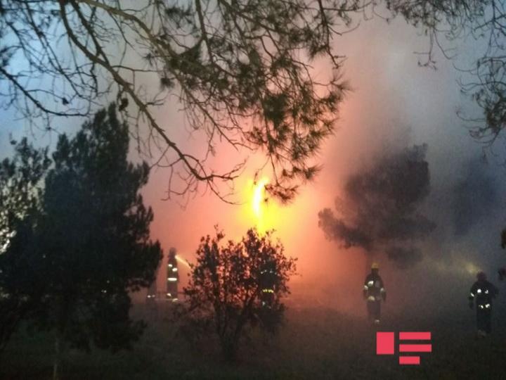 В связи с пожаром в Республиканском наркоцентре создана «горячая линия» – ФОТО – ВИДЕО – ОБНОВЛЕНО
