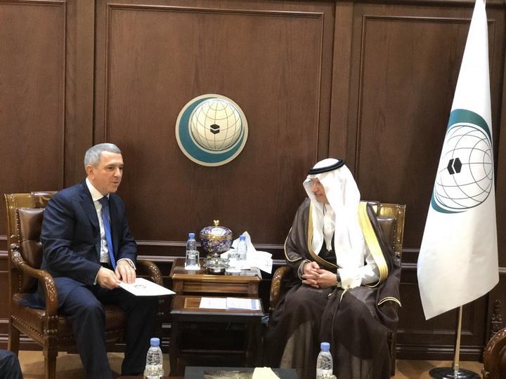 Шахин Абдуллаев назначен постоянным представителем Азербайджана в ОИС