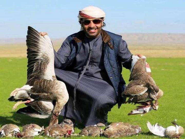 В Азербайджане задержан арабский турист, незаконно проникнувший в Национальный парк для охоты на редкую птицу