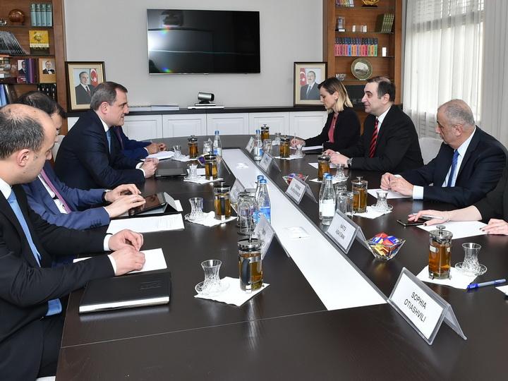 Азербайджан и Грузия обсудили сотрудничество в сфере образования - ФОТО