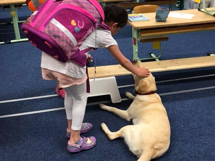 Собака в школе: новый способ помочь детям полюбить чтение и научиться заботе - ФОТО
