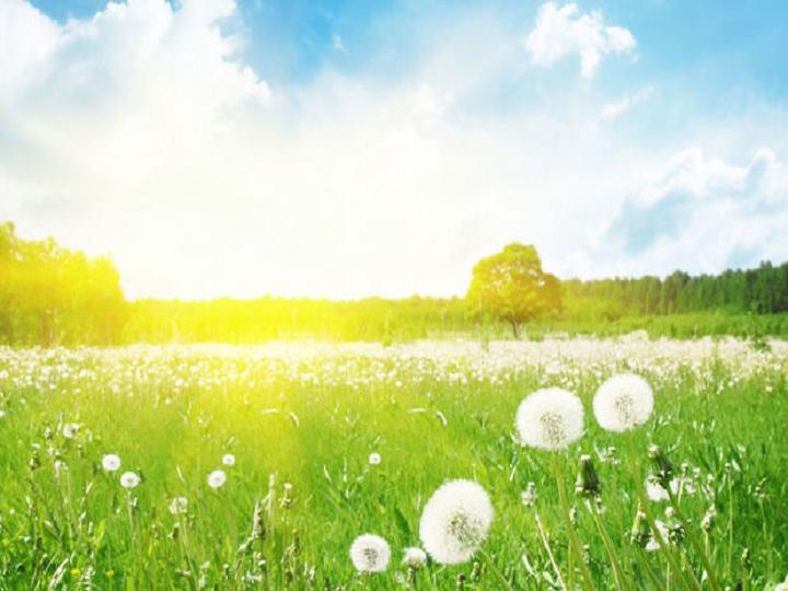 İstirahət günü üçün hava proqnozu açıqlanıb