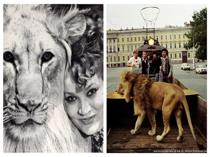В Баку скончалась хозяйка льва, снявшегося в фильме «Невероятные приключения итальянцев в России» - ФОТО – ВИДЕО
