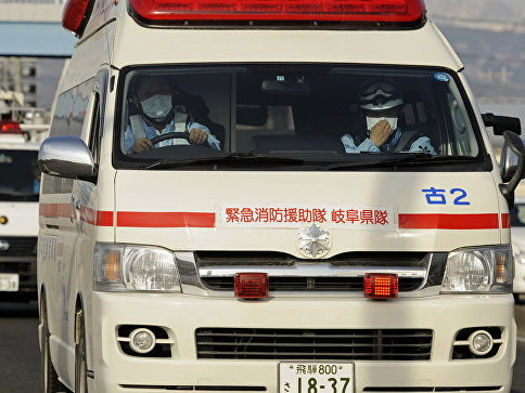 В Японии упал сверхлегкий самолет, пострадал 73-летний пилот