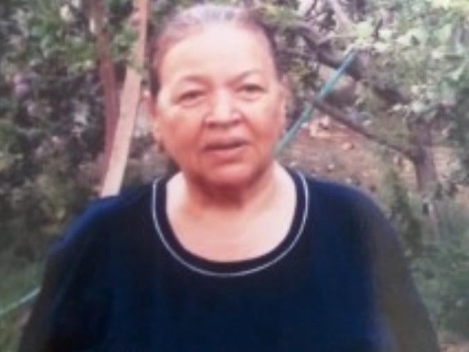 В Азербайджане женщина пропала без вести – ФОТО