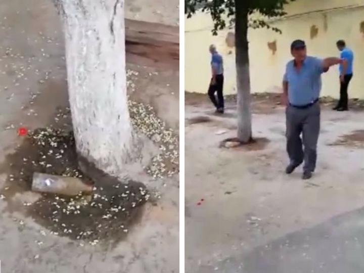 Беспрецедентный акт вандализма: В Баку деревья уничтожают кислотой  – ВИДЕО