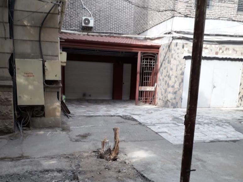 В Баку благодаря неравнодушным гражданам оштрафован мужчина, срубивший дерево - ФОТО