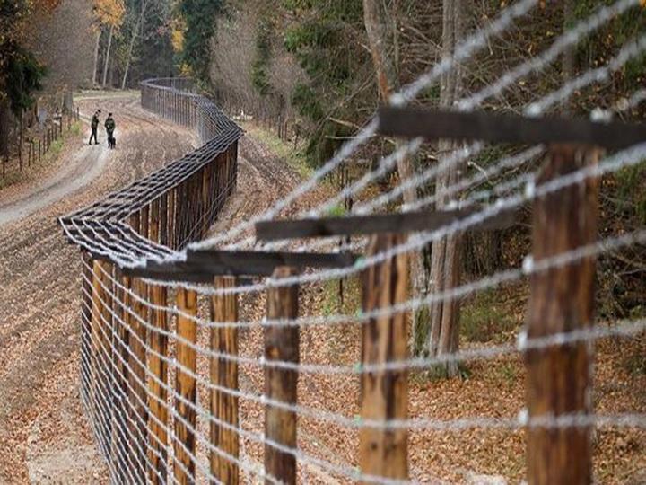 Дания построит забор на границе с Германией