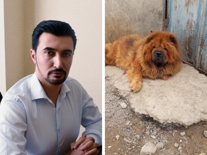 ИВ Хазарского района подала в суд на зоозащитника Фарида Мансурова: в чем суть спора? – ФОТО - ВИДЕО