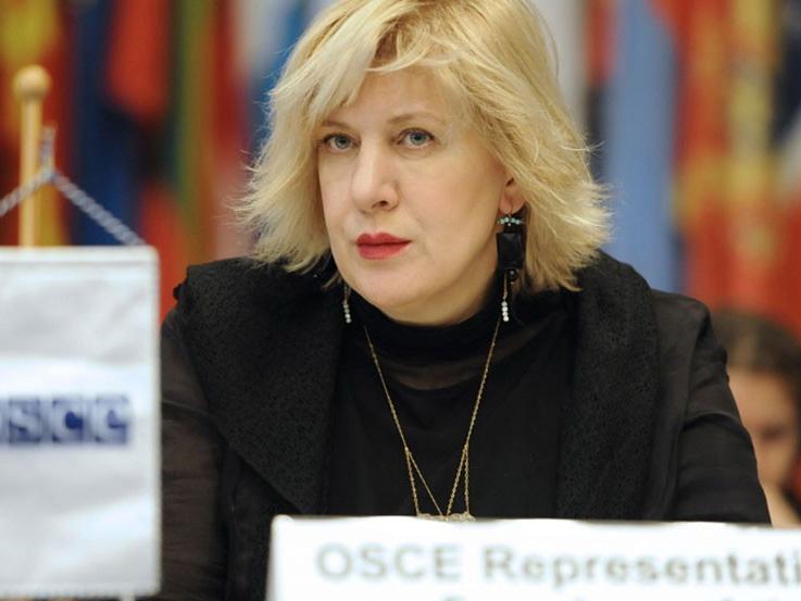Комиссар Совета Европы по правам человека прибудет в Армению