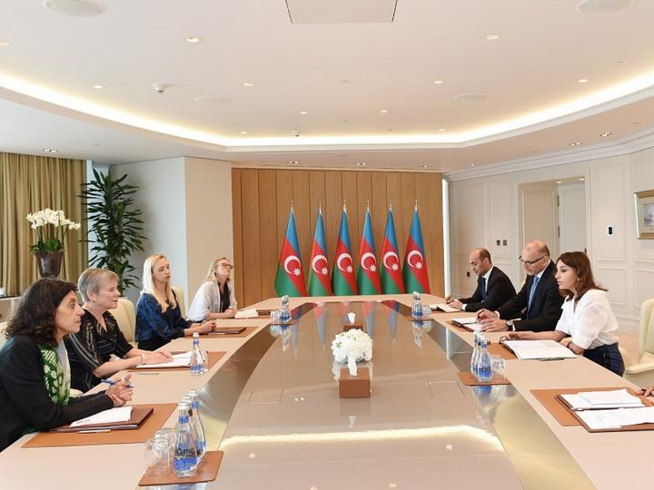 Mehriban Əliyeva NATO baş katibinin müavininin rəhbərlik etdiyi nümayəndə heyəti ilə görüşüb - FOTO