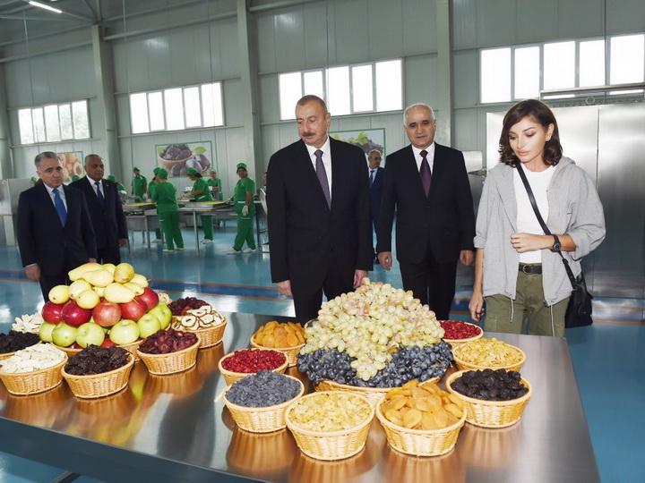 Президент Ильхам Алиев принял участие в открытии завода по производству сельскохозяйственной продукции ООО «Губаэкоаграр» - ФОТО