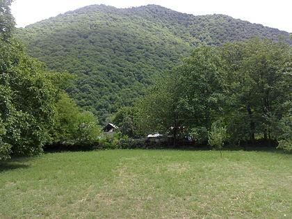 На входе и выходе из лесов будут установлены камеры