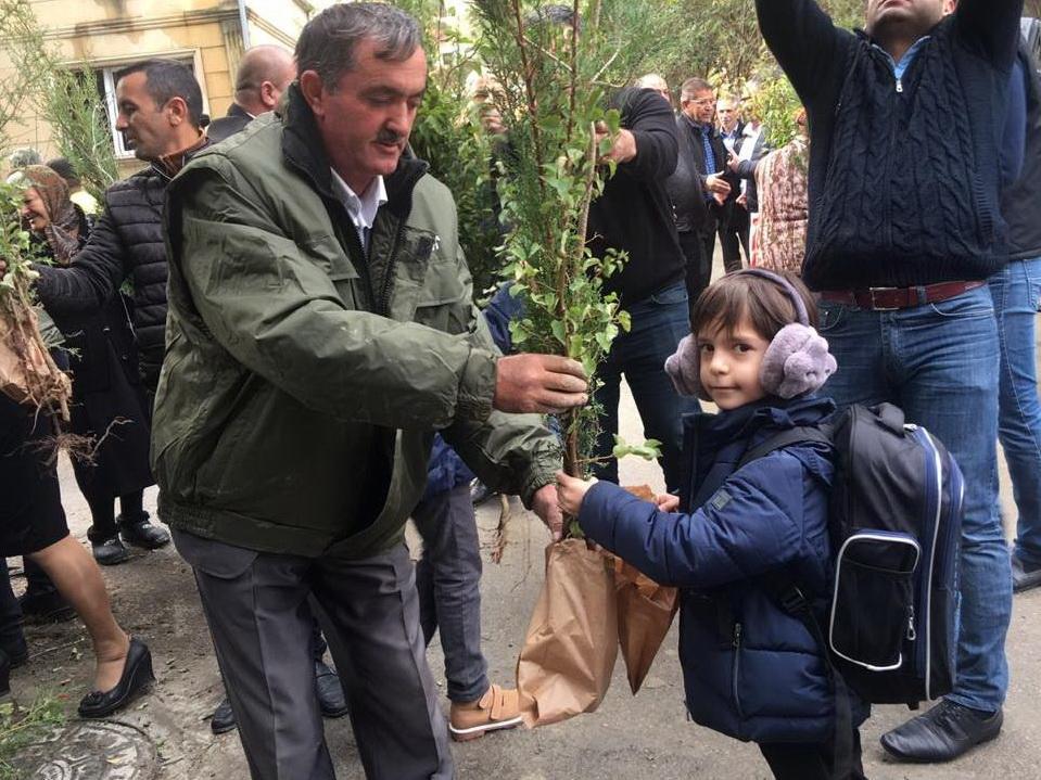 «Каждая семья посадит по дереву»  – в Азербайджане проходит акция Минэкологии – ФОТО