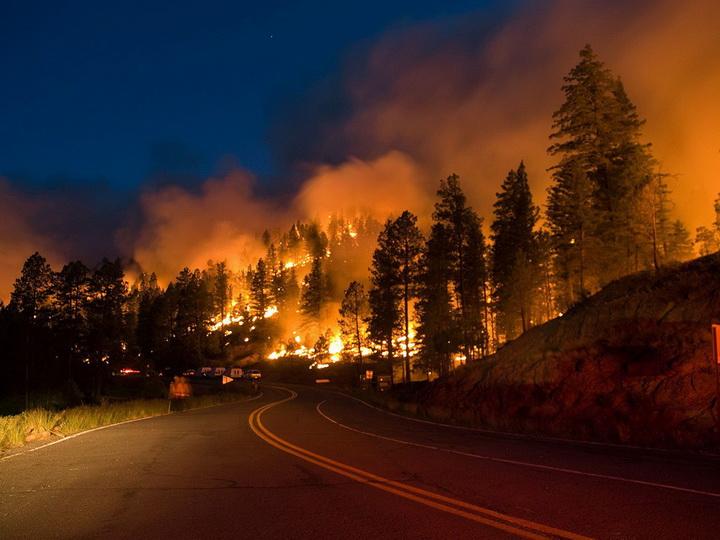 В Калифорнии более тысячи человек пропали без вести из-за пожаров