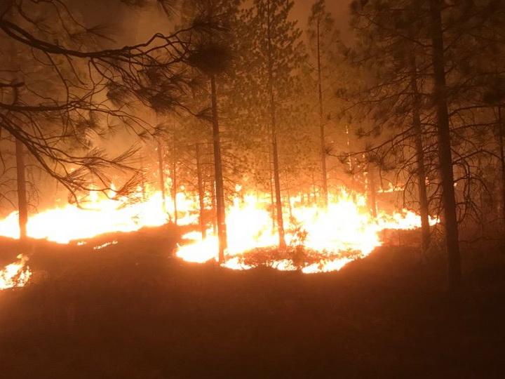 Число пропавших без вести при пожаре в Калифорнии возросло до 1276 человек