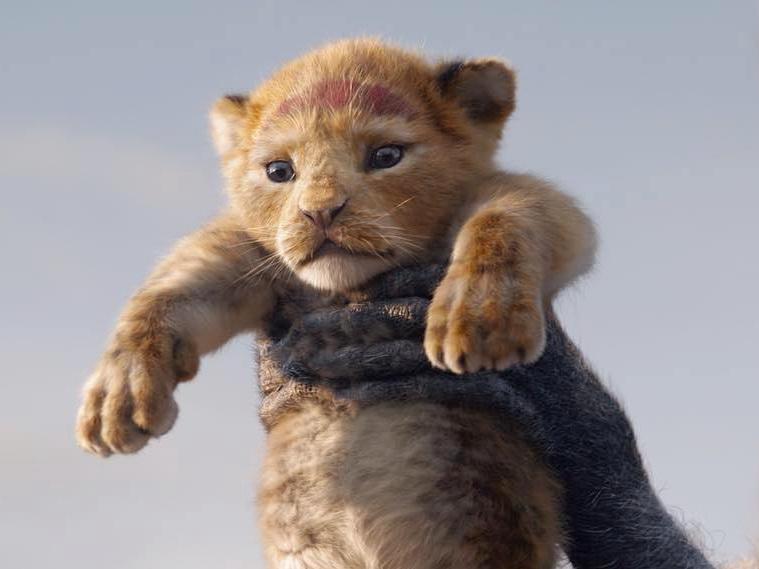 Трейлер ремейка «Короля Льва» побил рекорд по просмотрам – ВИДЕО