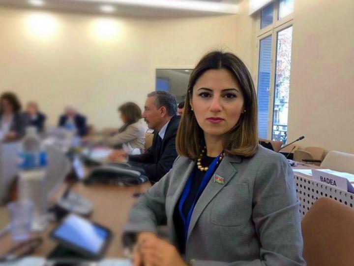 Азербайджанский депутат приняла участие в заседании комитета ПАСЕ