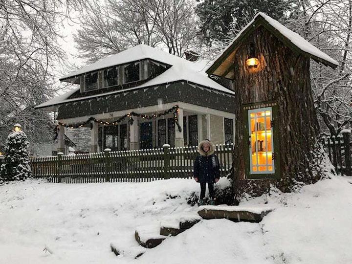 Простое чудо: как сухое дупло 110-летнего тополя стало маленькой библиотекой – ФОТО – ВИДЕО