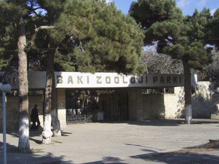 Подробности реконструкции: Бакинский зоопарк временно закрывается и расширяется в два раза