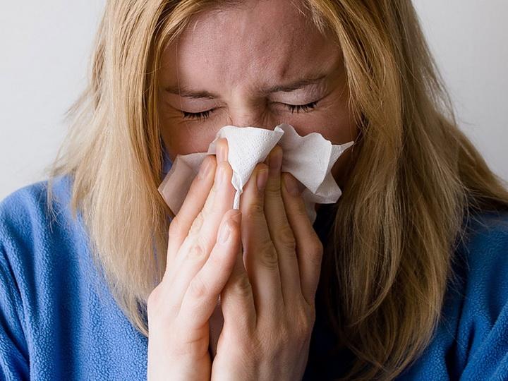 Европу атаковал неизвестный грипп, который убивает даже лошадей