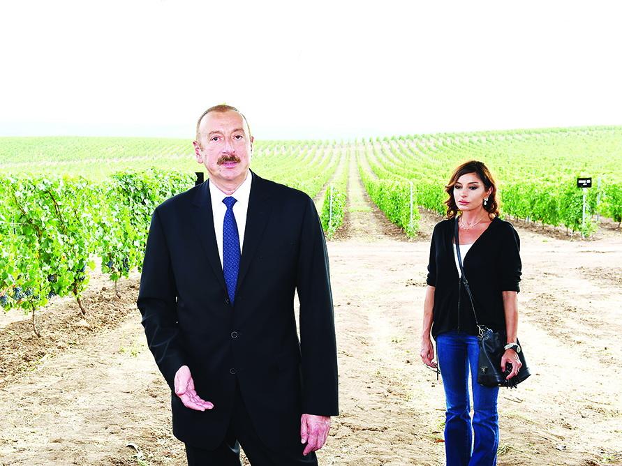 Отношение Президента Ильхама Алиева к обращениям граждан — пример для всех чиновников