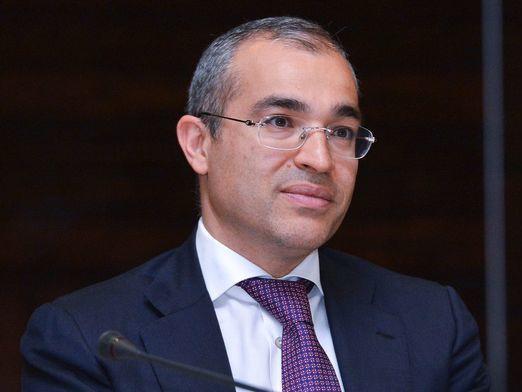 Микаил Джаббаров: «Мы пока в начале пути реформирования налоговой системы»