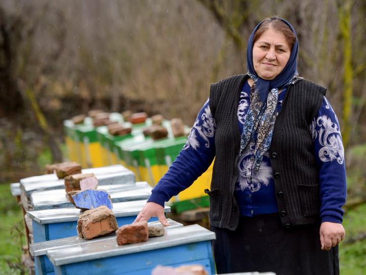 Айтекин Садыгова и ее пасека: Возрождение семейной традиции – ФОТО