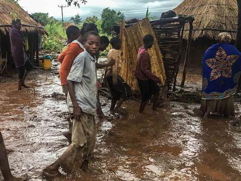 Число погибших в результате циклона в Мозамбике достигло 242