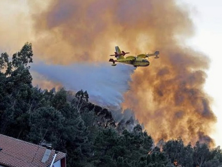 В Италии два студента пожарили барбекю на 13 млн евро