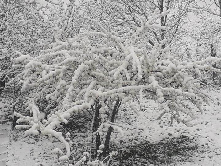 В Азербайджане идет снег - ФОТО - ВИДЕО