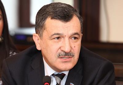 Айдын Мирзазаде: «Независимая политика Азербайджана не отвечает интересам определенных кругов за рубежом» - ФОТО