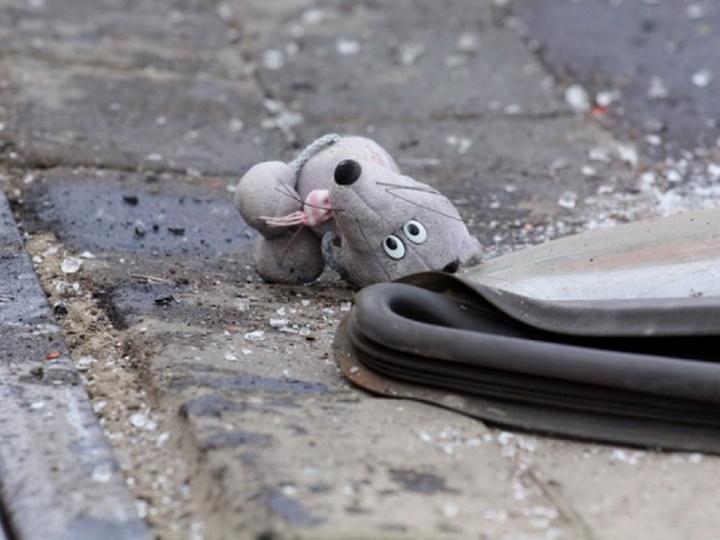 В Азербайджане водитель сбил ребенка, который убегал от напавших на него бродячих собак