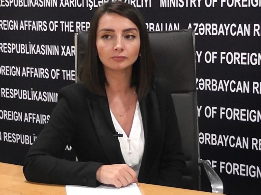 Лейла Абдуллаева: Армения должна постыдиться распространять тот или иной документ, повествующий о правах человека