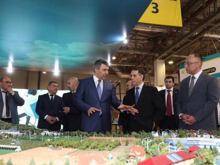 Новруз Мамедов ознакомился с международными выставками, проходящими в Азербайджане - ФОТО