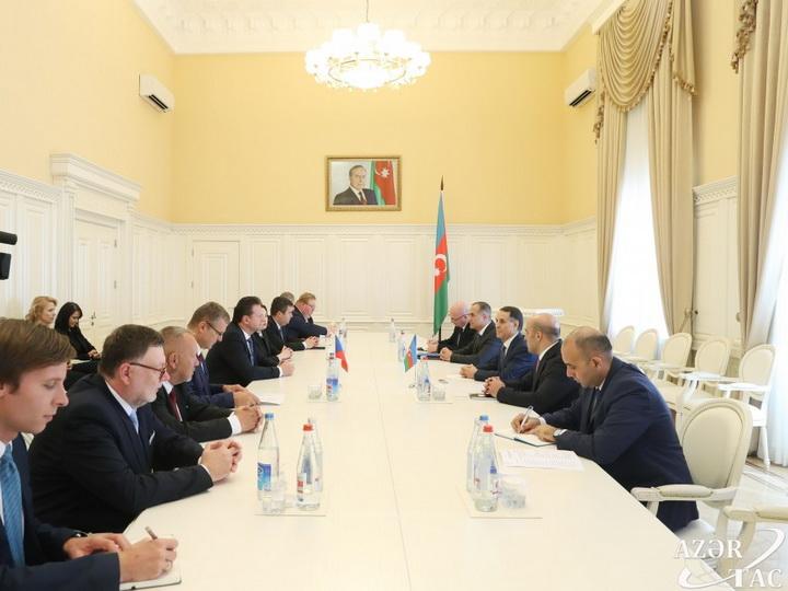 Новруз Мамедов встретился с делегацией во главе с председателем Палаты депутатов Парламента Чехии - ФОТО